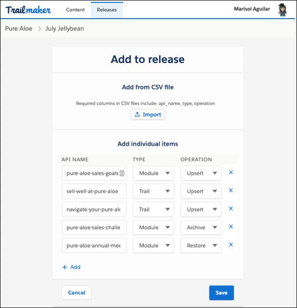 Bildschirm 'Zur Version hinzufügen' in Trailmaker Release mit mehreren Elementen, die der Version aus einer hochgeladenen CSV-Datei hinzugefügt wurden