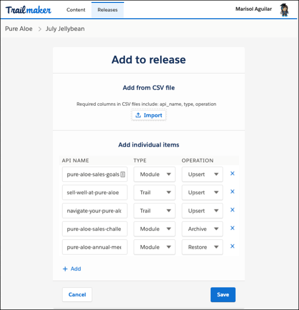 Tela Adicionar à versão no Trailmaker Release mostrando vários itens adicionados à versão oriundos de um arquivo CSV carregado