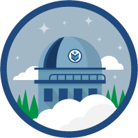 Vetforce badge