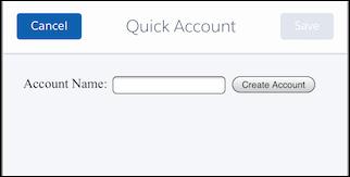 [Quick Account (簡易取引先)] アクションページを表示