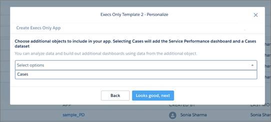 ケースをアプリケーションに追加するかどうかの新しい質問が設定された Execs Only のウィザード。