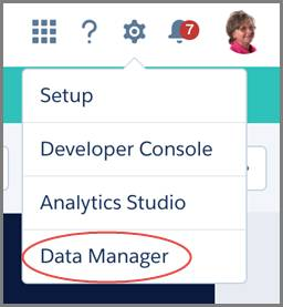 Select the Data Manager