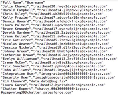 CSV 形式の Salesforce ユーザレポート