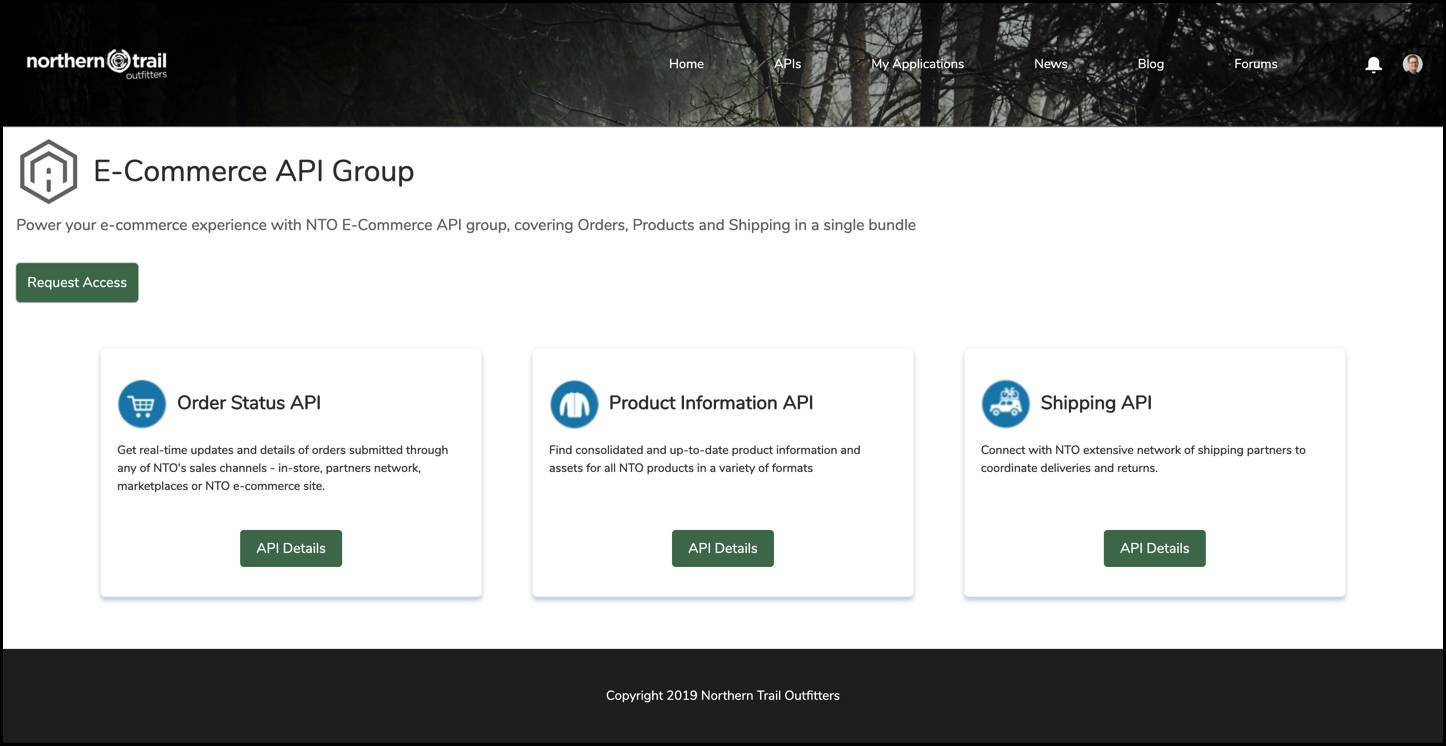 An API Group on Anypoint Exchange