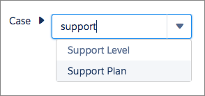 Selecting Support Plan in the Process Builder field picker