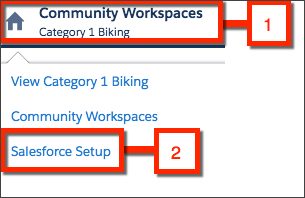 Click Community Workspaces and select Salesforce Setup.
