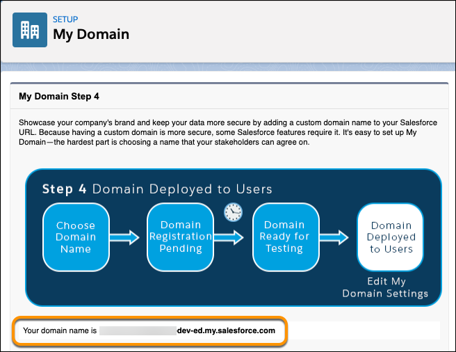 The My Domain page showing an org's domain name.