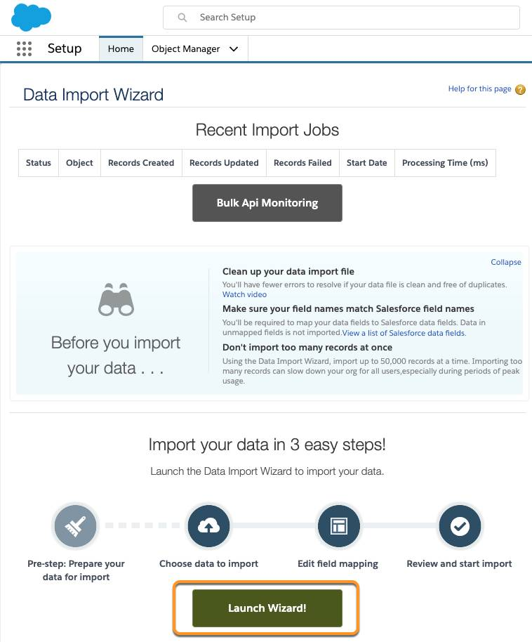 Data Import Wizard screen with Launch Wizard! Button highlighted.