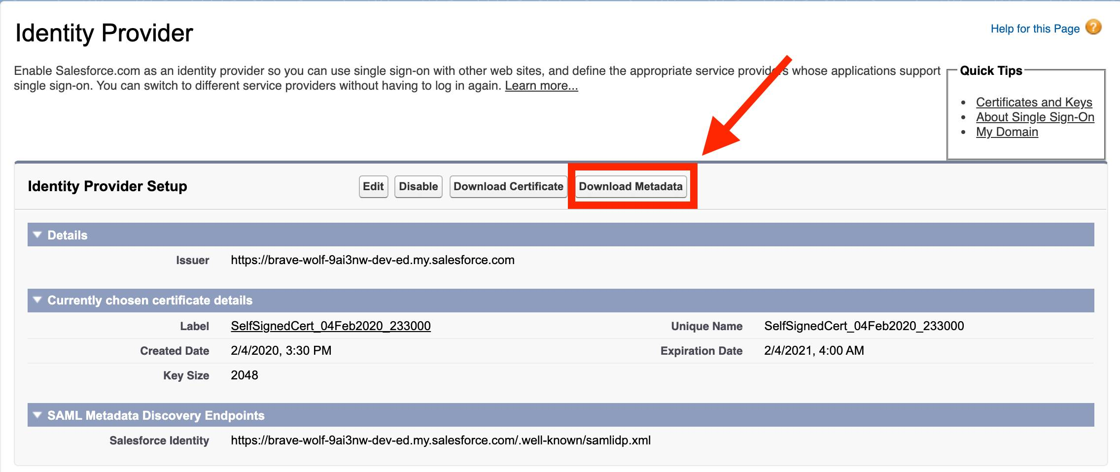 Salesforce Identity Provider page with Download Metadata button highlighted by a red box and arrow