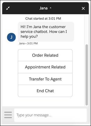 Robot Jana affichant son message d'accueil et ses options.
