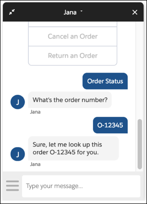 The Jana bot showing order status of O-12345.