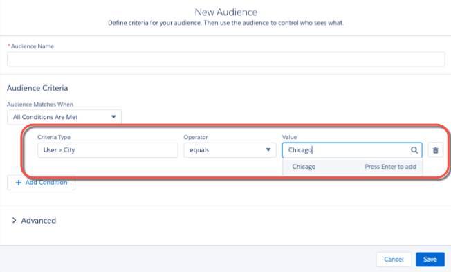 [New Audience (新規利用者)] の UI