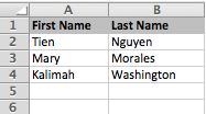 Image of a spreadsheet with first and last names.