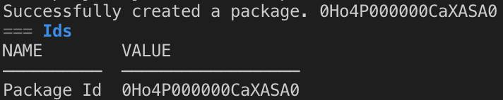 Terminal window displaying success message after a package is created.