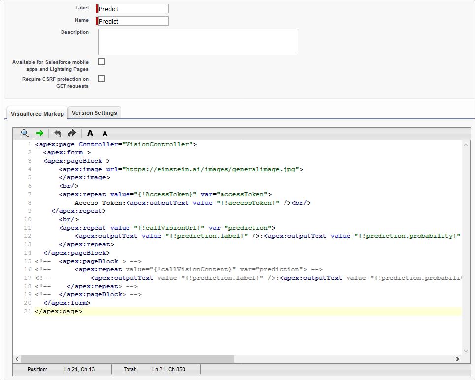 コードをコピーした後の Visualforce ページ。