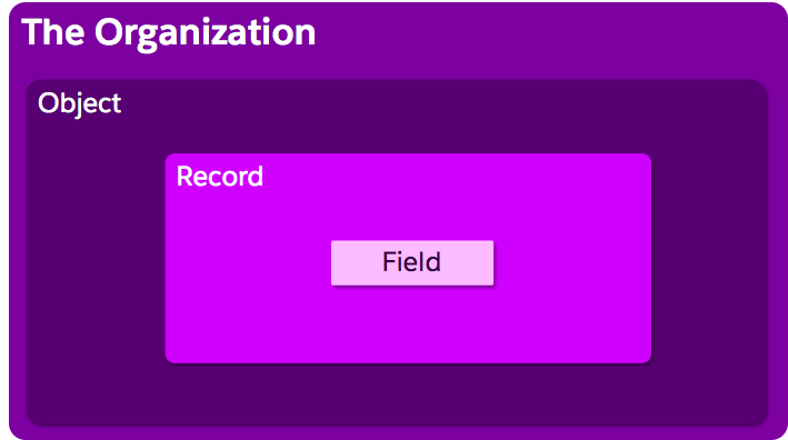 Organizational setup image, showing the Field nested inside the Record, which is nested inside the Object.