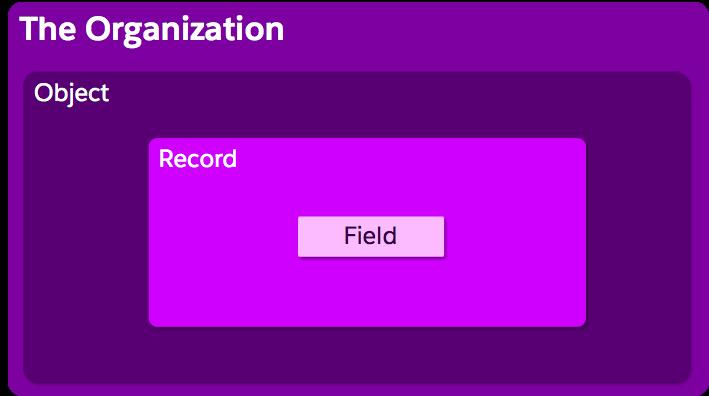 組織構造の画像。オブジェクトの中にレコードがネストされ、その中に項目がネストされています。