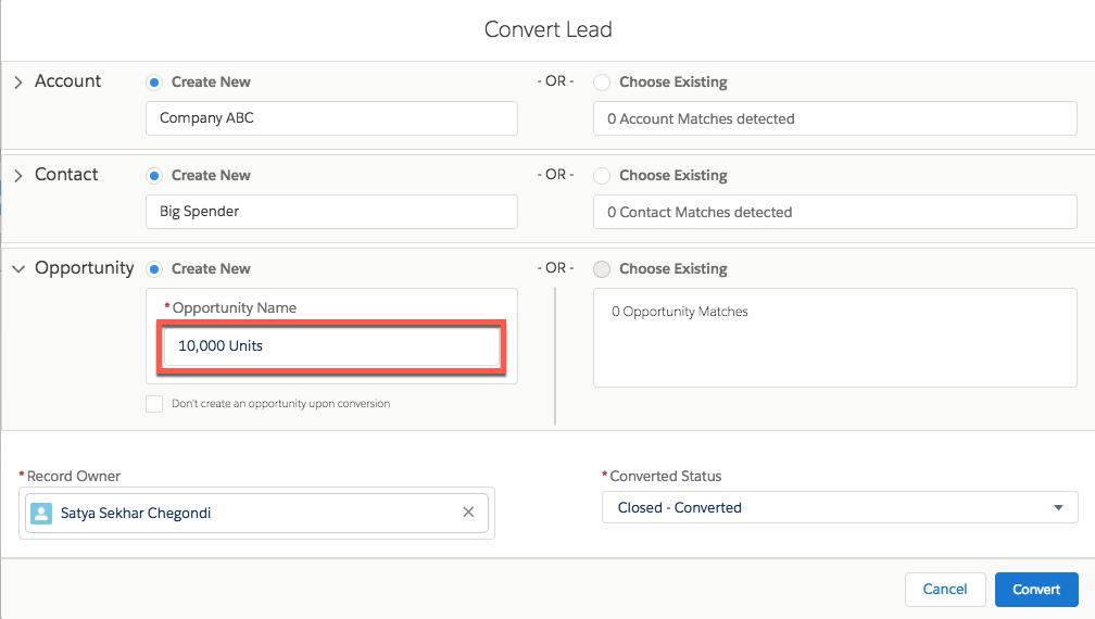 Screenshot der Seite 'Lead' mit hervorgehobener Schaltfläche 'Convert (Konvertieren)'