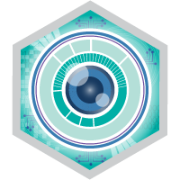 Einstein Analytics and Discovery Insights Specialist badge