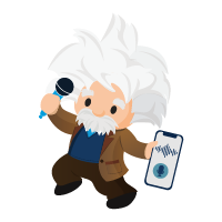 Boost Productivity with Einstein Voice Assistant icon