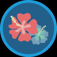 Salesforce Ohana Culture badge