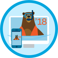 Platform App Builder Certification Maintenance (Summer '18) badge
