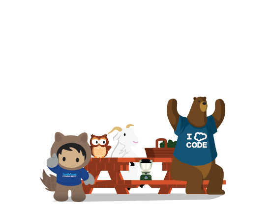 Salesforce Developers | API Documentation, Developer Forums & More