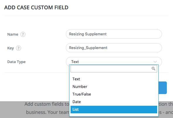 custom field details