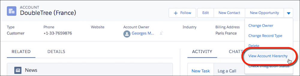 View Account Hierarchy action