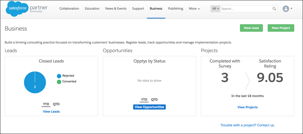 Business tab: leads, opportunies, projects
