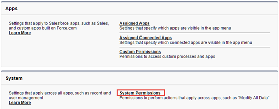 The System Permissions link on the Perm Set page.