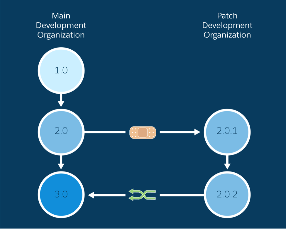 A patch is created from a major version, developed within a            patch development org, and merged back into the main development org            for a major or minor upgrade.