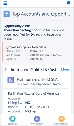 Test Your Custom Component in Salesforce1