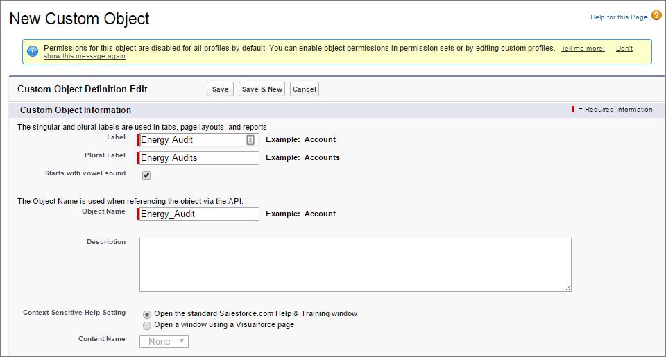 Energy Audit Custom Object