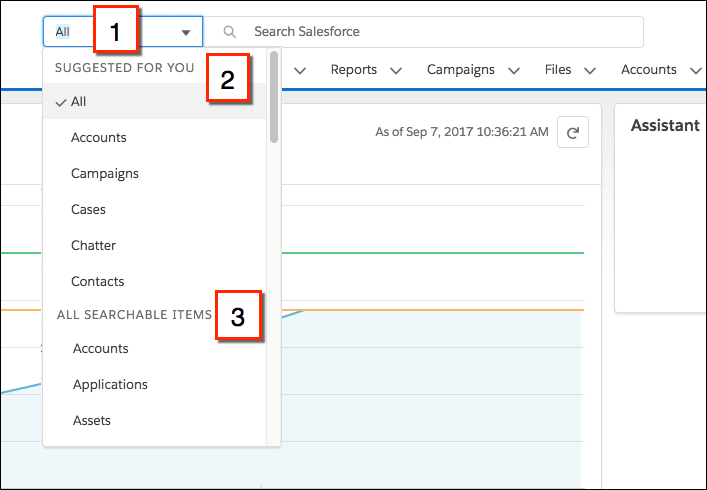 Limiting a search to a specific object in Lightning Experience