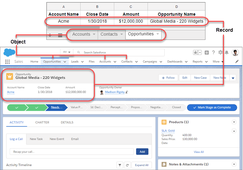 Image compares the rows and tabs in a spreadsheet to Salesforce tabs and records.