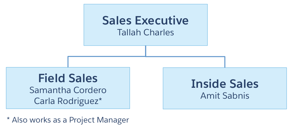 a diagram showing GenZ's sales organisational structure and individuals who also act as project managers