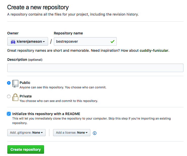 Screenshot of the repository creation screen.