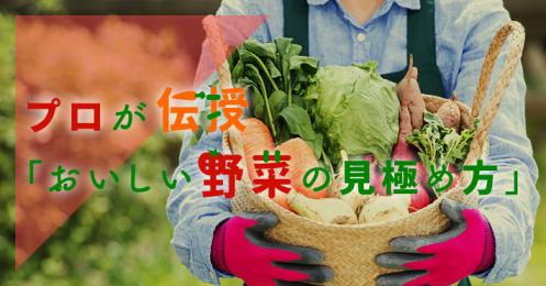 プロが伝授「おいしい野菜の見極め方」