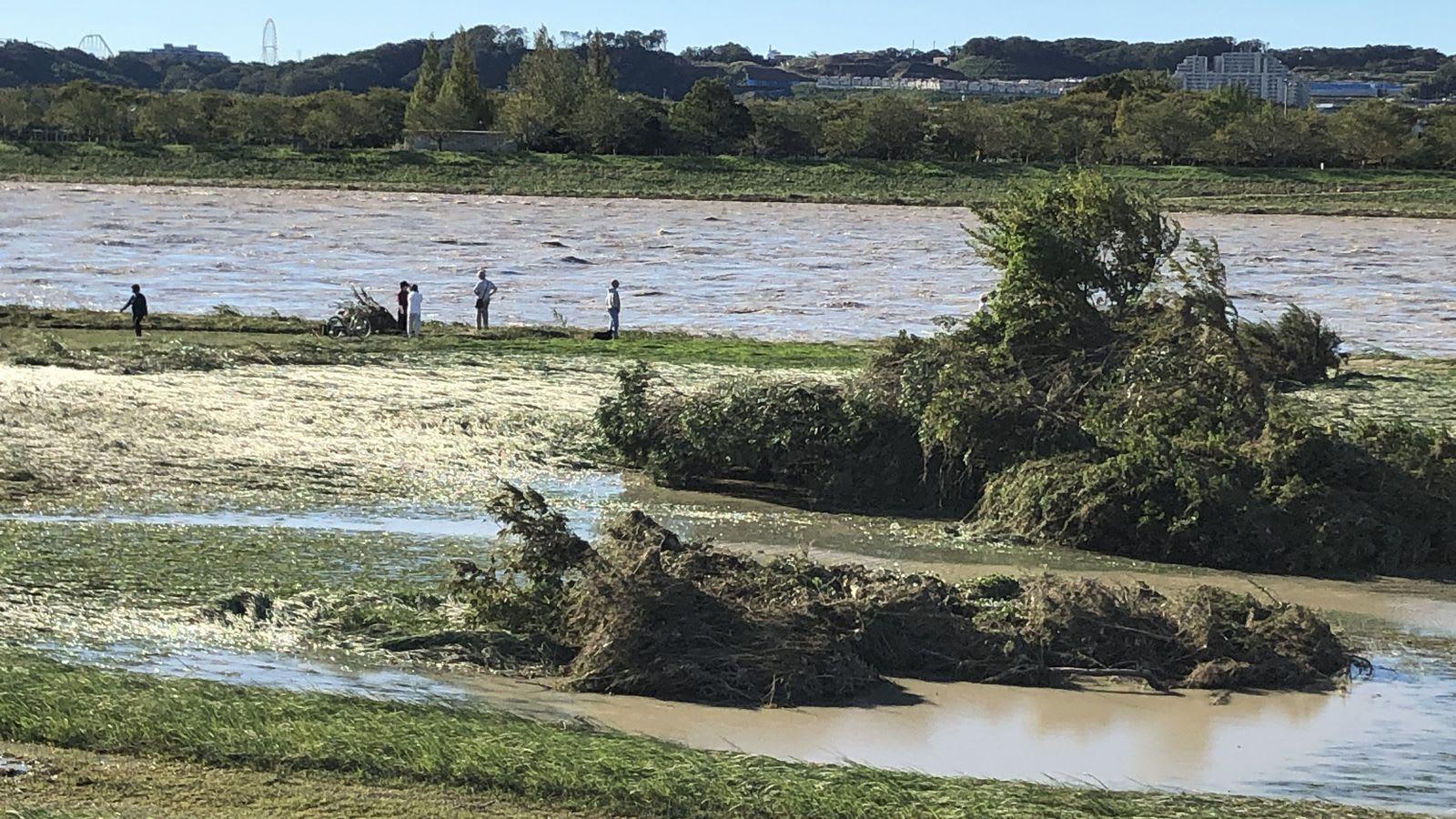 氾濫 箇所 多摩川