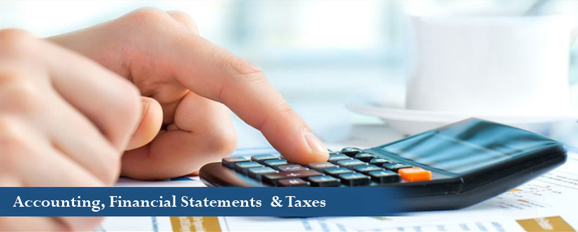 TAX and CPA Processing