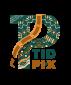 Tidpix