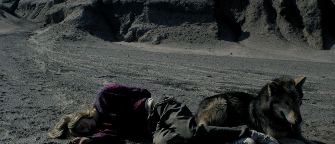 <h3>Wild</h3><h4>Ein Film von Nicolette Krebitz</h4>