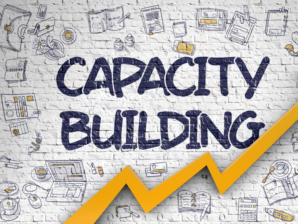 Knowledge Transfer and Capacity Building