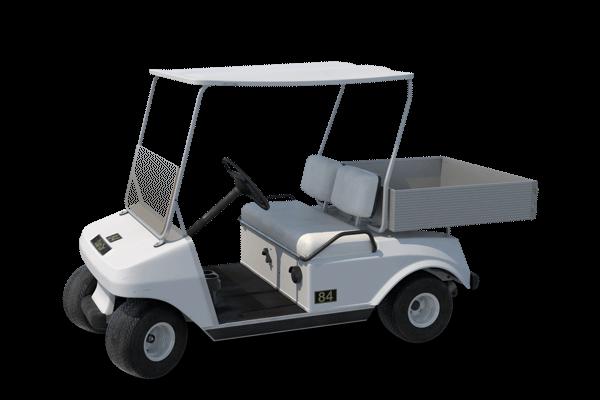 Festival Golf Kart