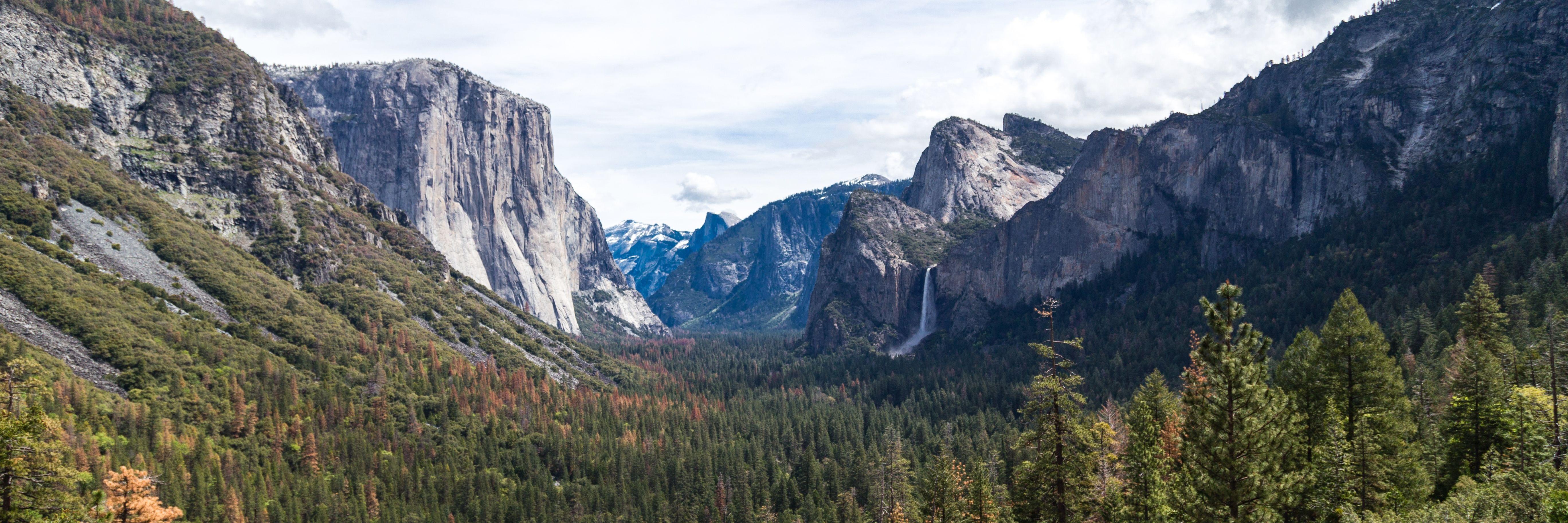 Yosemite Transportation From Sam Francisco