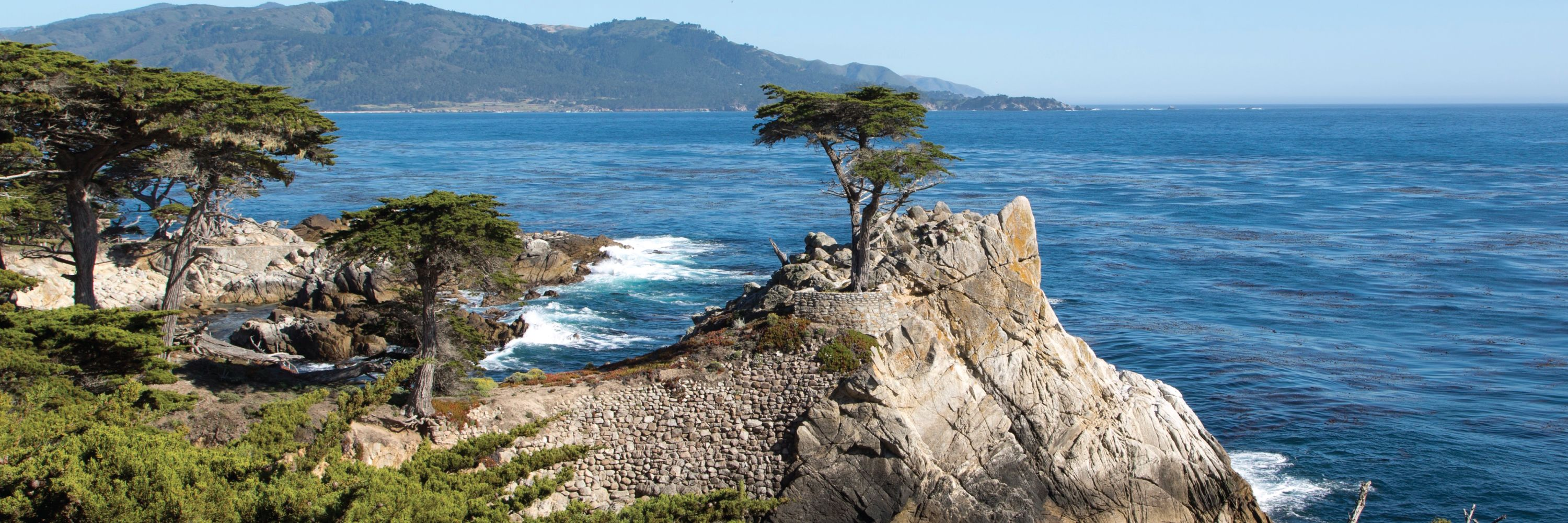 Monterey And Carmel Bus Tour From San Francisco