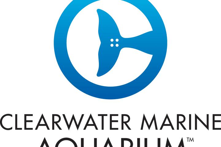 Cma primary logo web iklhdq
