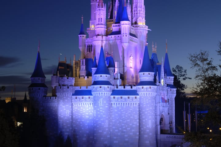 Magic kigdom castle lrbxcy