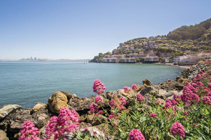 Sausalito Ferry (one way)